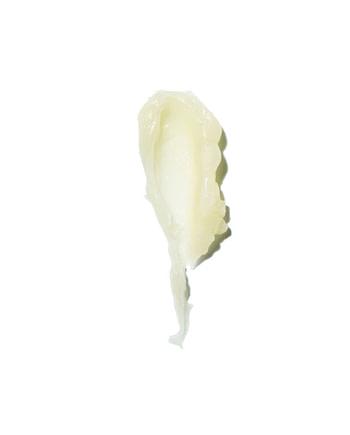 Mint Kiss - Vanilla + Mint Lip Balm